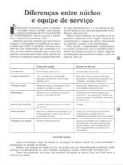 Diferenças entre núcleo e equipe de serviço.pdf