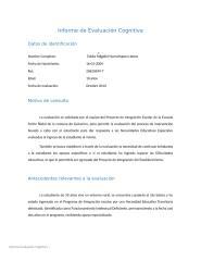 Informe Huenchupan Llanos.docx
