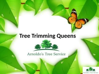 Tree Trimming Queens.pptx